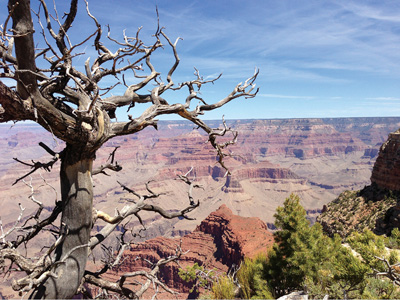 Grand Canyon & Rocky Mountains
